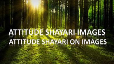 Photo of Attitude shayari images || Attitude Shayari on Images