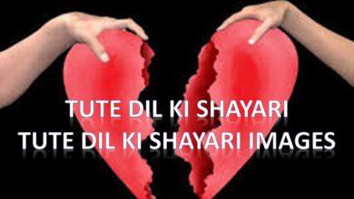 Photo of Tute Dil Ki Shayari – Tute Dil ki Shayari Images