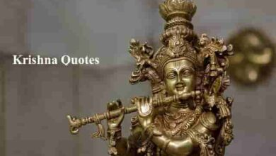 Photo of Krishna Quotes || Krishna Quotes with Images