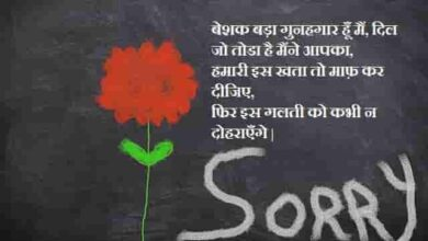 Photo of Sorry Quotes || Sorry Quotes in Hindi