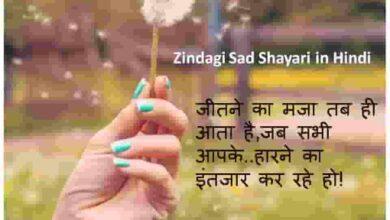 Photo of Zindagi Sad Shayari in Hindi   Quotes   images Download