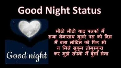Photo of Good Night Status | गुड नाइट स्टेटस