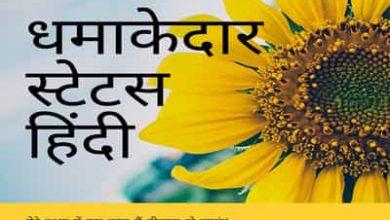 Photo of Dhamakedar Status in Hindi || धमाकेदार स्टेटस हिंदी