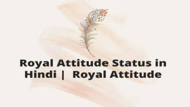 Photo of Royal Attitude Status in Hindi |  Royal Attitude